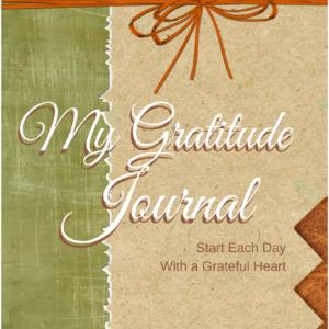 my-gratitude-journal-treasurednest